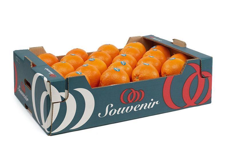 frutas carrusel producto